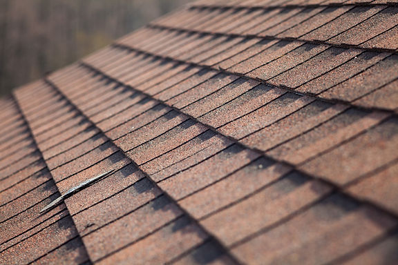 DBM Roofing | Shingle Roofs | Georgia and South Carolina