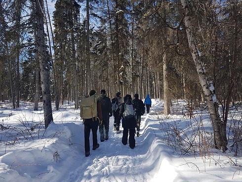 Noticing Nature Walk