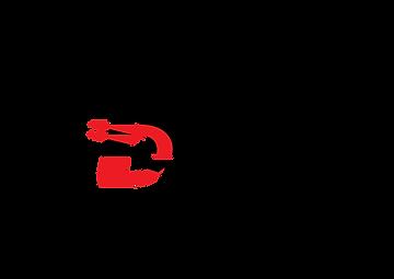 Rally Dreamer - virtual game - logo png.