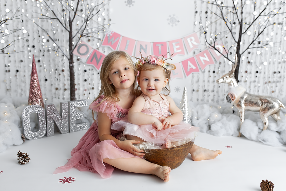 WINTER ONEDERLAND SMASH SESSION | HAMILTON ONTARIO CAKE SMASH SESSION | PHOTOGRAPHER IN HAMILTON ON