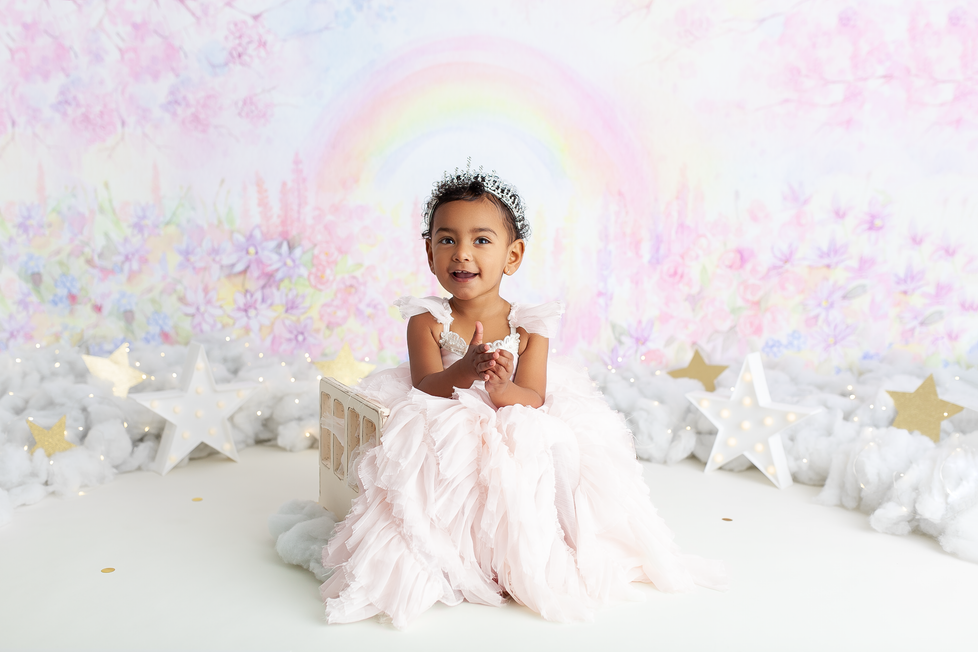 PRINCESS CAKE SMASH SESSION | HAMILTON ONTARIO CAKE SMASH SESSION | PHOTOGRAPHER IN HAMILTON ON