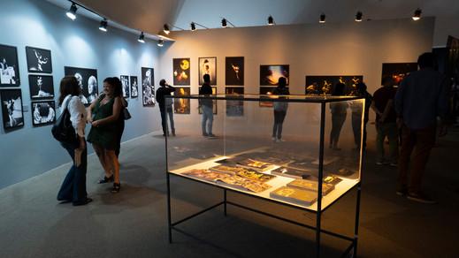 ATO - Teatro e Dança - Mila Petrillo - Exposição - 2019.