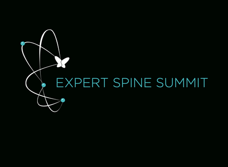 SPINEART EXPERT SPINE SUMMIT INTERNATIONAL COURSE - 2018