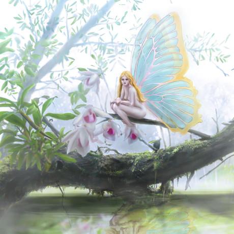 Dawn fairy