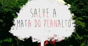 Save the Mata do Planalto.jpg