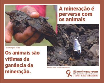 animal posts.jpg