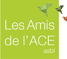 amis-ACE.png