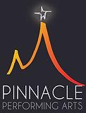pinnacle logo BLACK copy.jpg