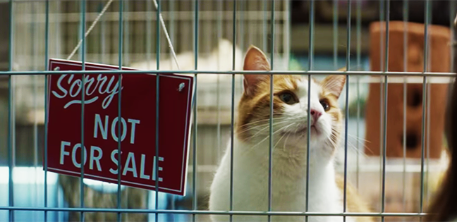 10 of the best ads from January: Slo-mo dogs, flaming pianos and an epic BBQ.