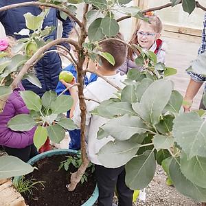 Shawbost School Gardening Club