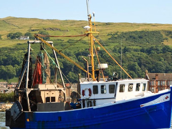SNP Government Supports Scottish Seafood Industry with £22.5 million