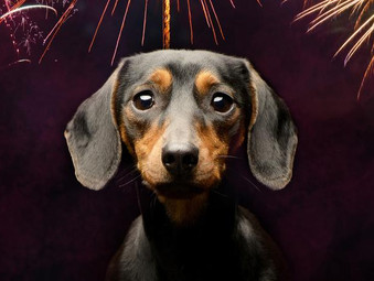 Fireworks Safety Consultation Launched