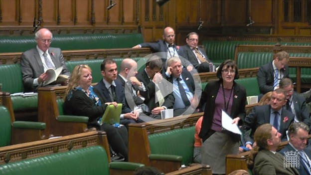 Patricia's Adjournment Debate on Nuisance Calls