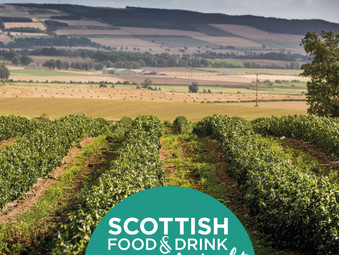 Support Local Producers during Scotland Food & Drink Fortnight