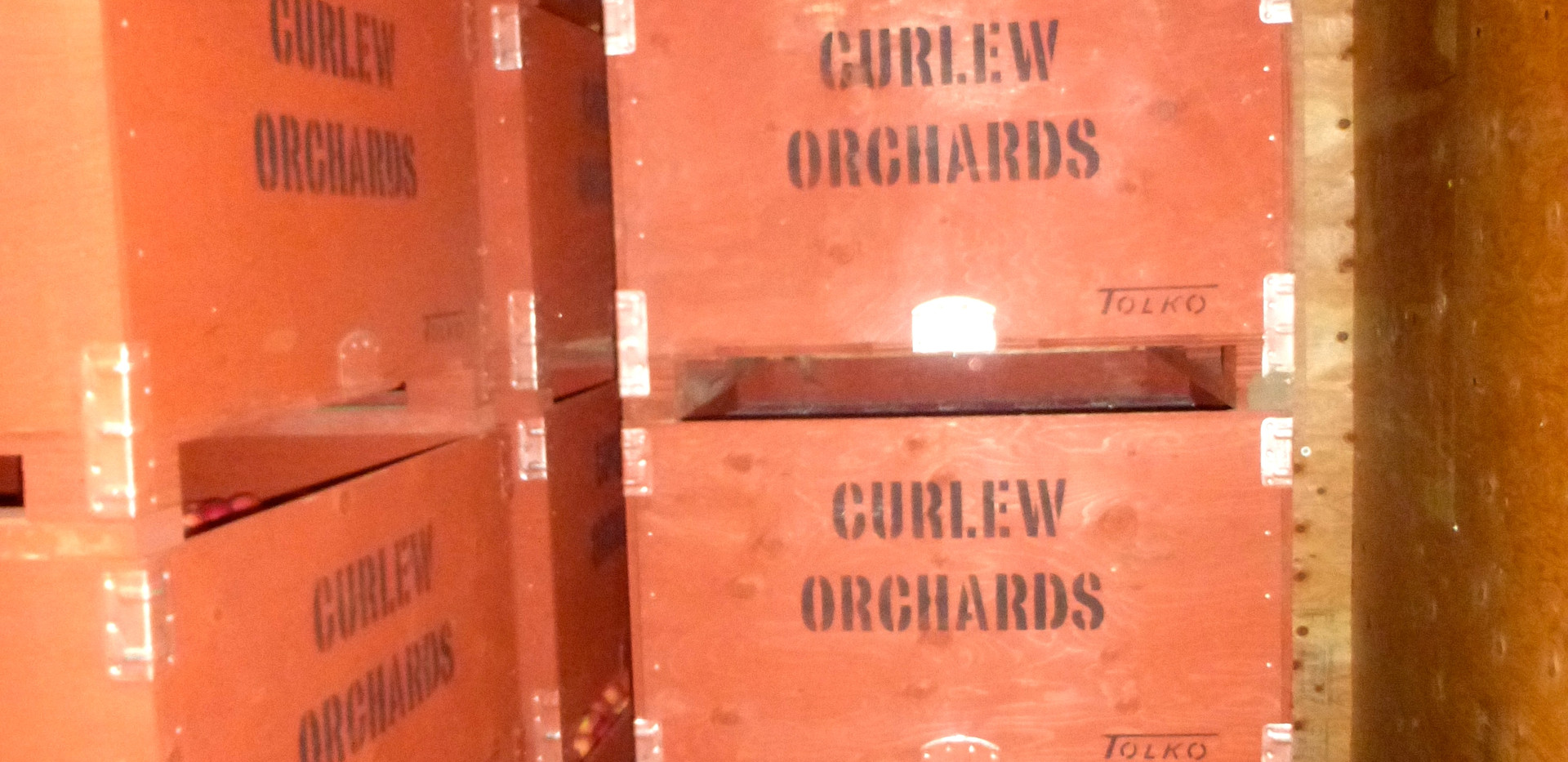 Apples in cold storage