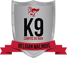 Canil K9 Campos do Mar - Pastor Belga Malinois