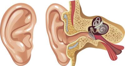 Почему звенит в ушах
