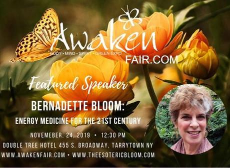 Energy Medicine Talk at The Awaken Fair in Tarrytown, NY Sunday November 24, 2019