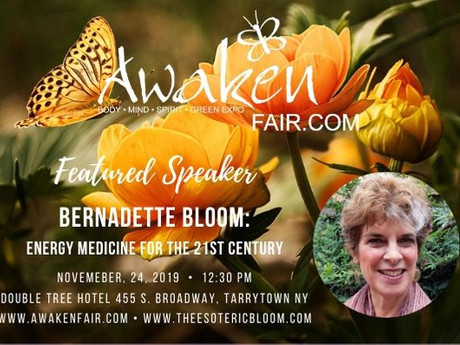 Energy Medicine Talk at The Awaken Fair in Tarrytown, NY Sunday November 24, 2019