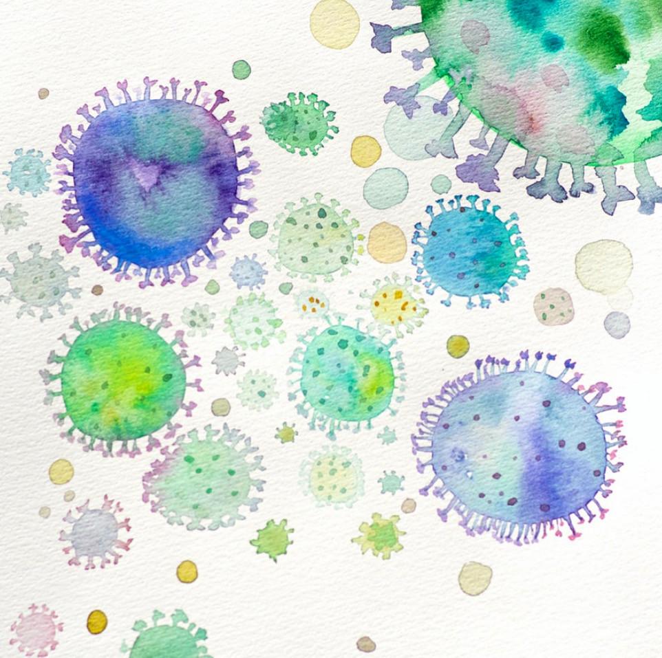 Une bactérie est un procaryote qui peut se reproduire seule. A contrario, le virus n'est pas considéré comme être vivant car il ne peut se reproduire seul.  Les antibiotiques sont efficaces contre les bactéries mais non contre les virus. Ils sont souvent administrés, même quand on ne sait pas précisément la nature de la maladie. Par exemple une angine est une maladie bactérienne alors qu'une grippe est une maladie virale, mais leurs symptômes peuvent se ressembler.  D'autre part, l'antibiotique tue toutes les bactéries, il ne fait pas la différence entre les bonnes et les mauvaises. Or nous avons énormément de bonnes bactéries (notamment dans la flore intestinale) qui sont essentielles au bon fonctionnement du corps. Vous comprendrez pourquoi une prise répétée d'antibiotiques peut dérégler et fragiliser le système immunitaire.   La chromothérapie permet de guérir les infections virales ou bactériennes sans les effets néfastes des antibiotiques. Elle permet également de renforcer le système immunitaire notamment avec la chromopuncture basée sur les principes de la médecine traditionnelle chinoise.