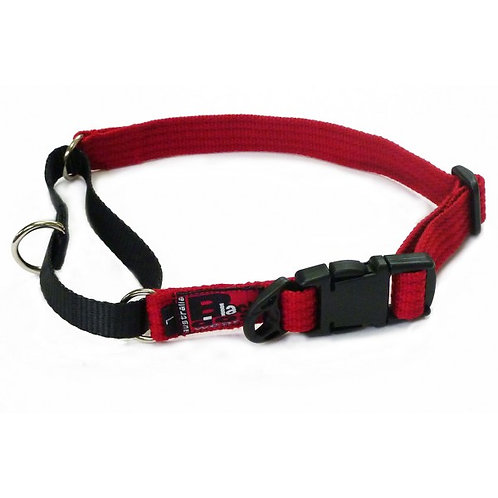 Black Dog Wear Training Collar - Large
