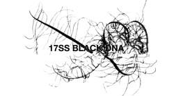 17SS BLACK DNA