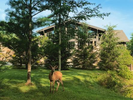 Spa Getaway-The Lodge at Woodloch