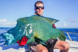napo long reef (9 of 20).jpg
