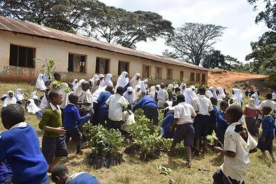 Tanzania_Aug2020.JPG
