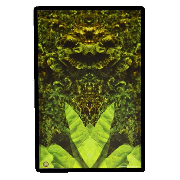 DeepForest_NugMan_display.png