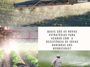 Quais são as novas estratégias para acabar com  a resistência de ervas daninhas aos herbicidas?