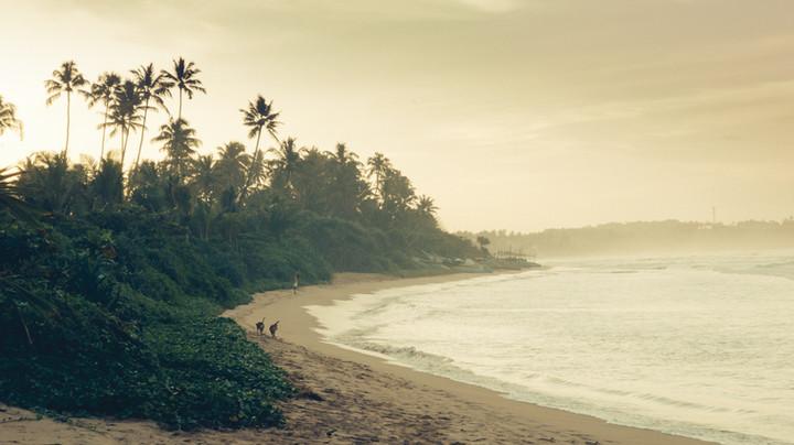 Landscape. Welligama Bay, Sri Lanka