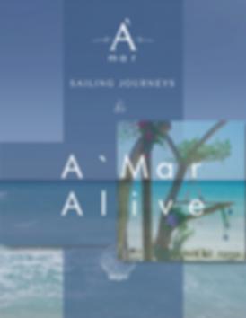 Yachting Experience Cartagena