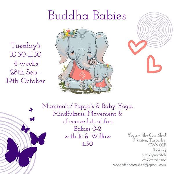Buddha babies Facebook Post (2).jpg