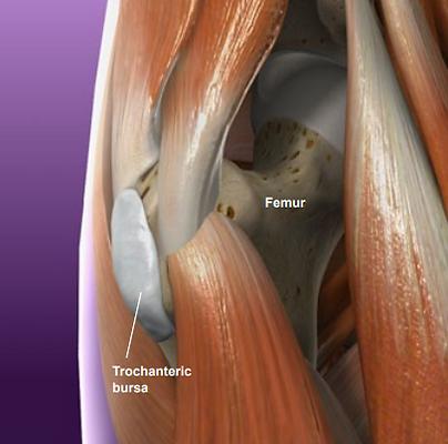 femur, trochanteric, bursa