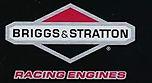 Briggs logo racing.JPG