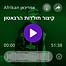 Screen Shot 2020-03-03 at 4.10.20 PM.png