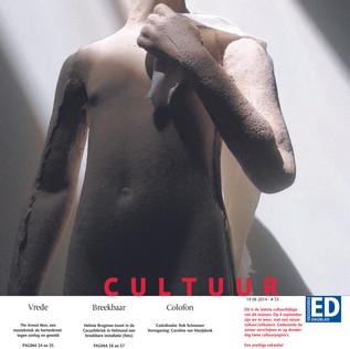 review ED 2014, text Anneke van Wolfswinkel De ene David is de Andere niet