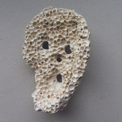 Skale poreus inside