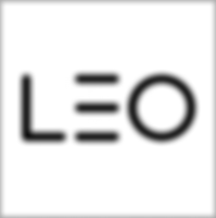 LEO Learning logo