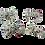 Thumbnail: ETTA Bows