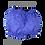 Thumbnail: BLUEBELL