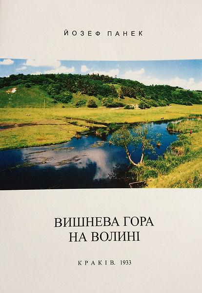 17 - Vyshneva gora - 02.2017.jpg