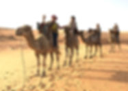 DESERT LOMPOUL-BALADE EN CHAMEAU (1).jpg