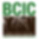 BCIC Logo.png