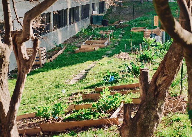 Jardin partagé du quartier chemin vert bobigny