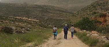 Wandeling naar Duma, Palestina - Saffraan Reizen