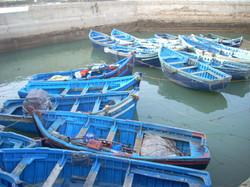 marok eesaoueira