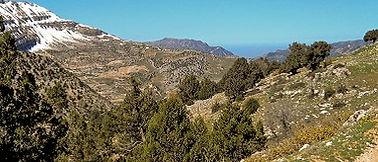 Beiteddine Libanon Saffaan Reizen