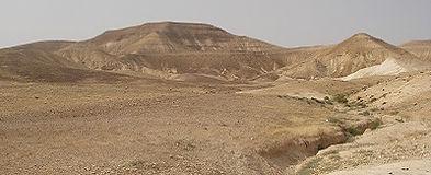 De woestijn bij Rashaydeh, Palestina - Saffraan Reizen